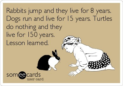 bunnyfood:  (via pleatedjeans:someecards)