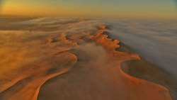 steroge:  Lingering fog (Kalahari sand dunes, Africa)  Foggy sand dunes would be so disorienting to be in.