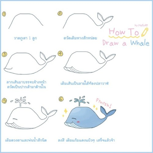 How to draw a whale in 6 steps ;) so easy ~ #whale #drawing #draw #illustrated #howto