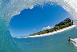 surf4living:  brazilian barrel