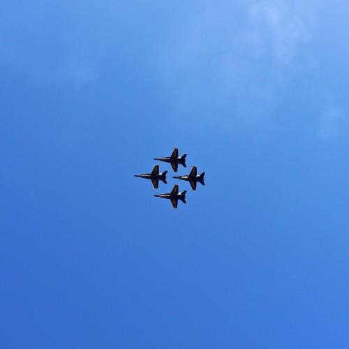Blue Angels! #fleetweek