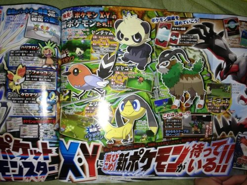 tinycartridge:  New Pokémon and details from X/Y You can see four new Pokémon in this purported CoroCoro scan for the upcoming 3DS game — the ridable Grass-type Gogoat, the Electric-type lizard thing, the Normal/Flying-type bird Yayakoma, and the Fighting-type panda Yanchamu. Serebii also notes that the game is set in the Karos region (in a location seemingly based on France), and has trainer customization features for hair and skin color. BUY Pokemon X and Y, upcoming releases