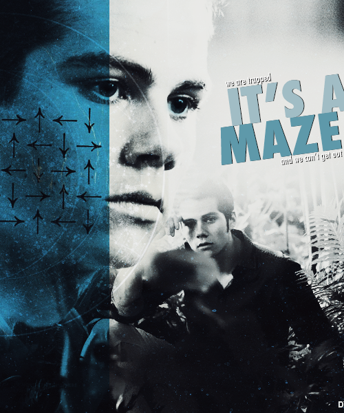 jemherondale:  the maze runner: run or die.