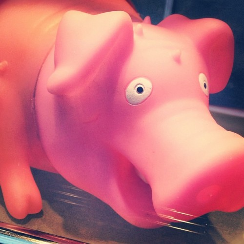 """How much is that piggy in the window, oink oink!"" 🎶 // ""If you're a piggy and you know it tag your name, oink oink!"" 🎶 —- I can even make childhood songs dirty 😈 / on Instagram http://bit.ly/13EUEJ8"