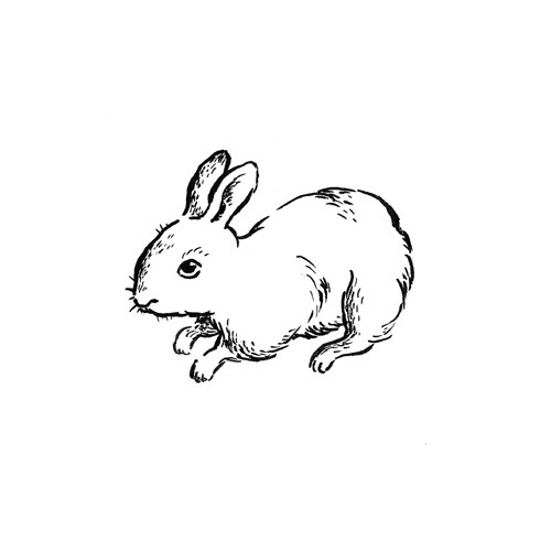 "Rabbit, 2013. Ink on paper, 3""x3""."
