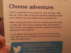I got this in the mail, and it talked about all my fears, and it's a sign.  I want adventure