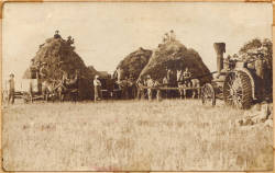 threshing-crew-on-jake-sandmire-farm-at-ash-ridge