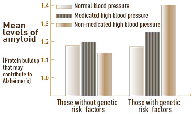 "Hypertension Could Bring Increased Risk for Alzheimer's disease A study in the Journal of the American Medical Association Neurology suggests that controlling or preventing risk factors, such as hypertension, earlier in life may limit or delay the brain changes associated with Alzheimer's disease and other age-related neurological deterioration. Dr. Karen Rodrigue, assistant professor in the UT Dallas Center for Vital Longevity (CVL), was lead author of a study that looked at whether people with both hypertension and a common gene had more buildup of a brain plaque called amyloid protein, which is associated with Alzheimer's disease. Scientists believe amyloid is the first symptom of Alzheimer's disease and shows up a decade or more before symptoms of memory impairment and other cognitive difficulties begin. The gene, known as APOE 4, is carried by 20 percent of the population. Until recently, amyloid plaque could be seen only at autopsy, but new brain scanning techniques allow scientists to see plaque in living brains of healthy adults. Findings from both autopsy and amyloid brain scans show that at least 20 percent of typical older adults carry elevated levels of amyloid, a substance made up mostly of protein that is deposited in organs and tissues. ""I became interested in whether hypertension was related to increased risk of amyloid plaques in the brains of otherwise healthy people,"" Rodrigue said. ""Identifying the most significant risk factors for amyloid deposition in seemingly healthy adults will be critical in advancing medical efforts aimed at prevention and early detection."" Based on evidence that hypertension was associated with Alzheimer's disease, Rodrigue suspected that the combination of hypertension and the presence of the APOE-e4 gene might lead to particularly high levels of amyloid plaque in healthy adults."