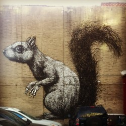 Rodents of Unusual Size #roa #streetart #graffiti #nyc #lady_birdseyeview