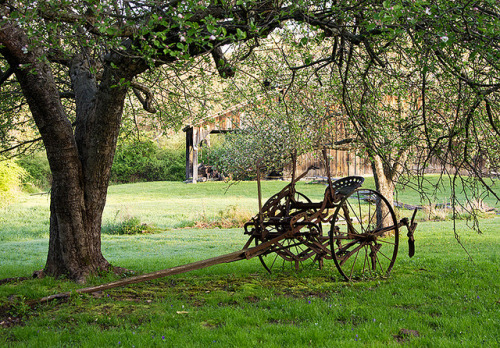 c0mprendo:  Old Farm Equipment Under Tree, Millbrook Village by D2Gallery on Flickr.