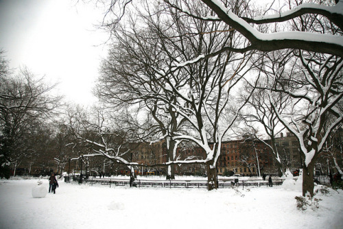 myheartisinnyc:  New York City, Manhattan, East Village, Tompkins Square Park by (vincent desjardins) on Flickr.