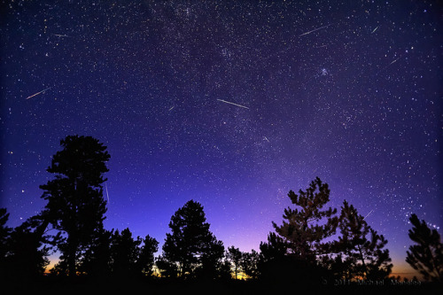 neptunesbounty:  Morning Meteors of the Perseid Kind by Fort Photo on Flickr.