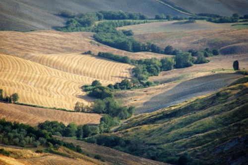 lensblr-network:  volterra IV/2006 by yiannis krikis  (jkrikis.tumblr.com)  Thank you very much lensblr
