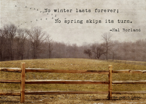 bottleneckdreams:  No Winter Lasts Forever by Sparrow Girl- Will I EVER Catch Up? on Flickr.
