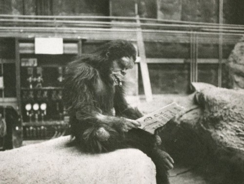 redchronicles:  2001: a space odyssey  behind the scene
