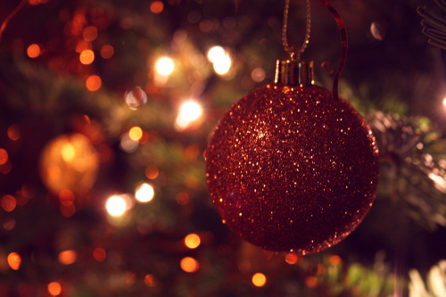 weheartchristmas:  Christmas tree (by A♀)