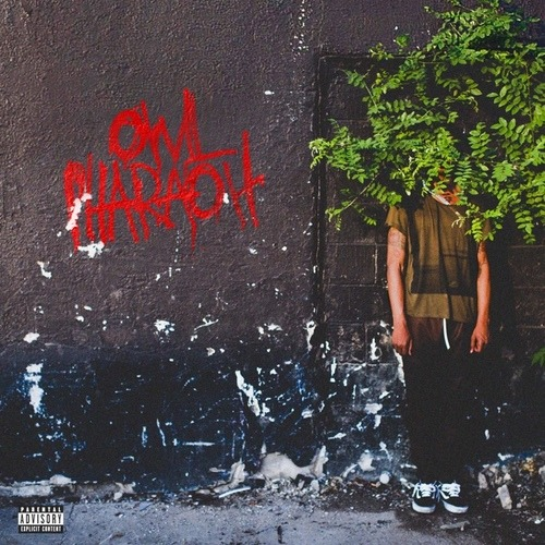 Owl Pharaoh Available NOW  XX