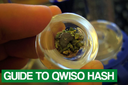 weedporndaily:  How To Make QWISO (Alcohol Extracted Hash Oil) QWISO, or Quick Wash ISOpropyl Alcohol Hash Oil, is a hash oil (concentrated form of cannabis) created using alcohol as the solvent. Most hash like kief, dry sieve, rub, scissor, and even bubble/full melt/ice wax, is made by rubbing the trichomes off the plant. Hash oil, however, is created by using a solvent (such as alcohol, butane, naptha, etc) to absorb the cannabinoids, then the solvent is removed through evaporation. Also note: the difference between QWISO / ISO hash and an alcohol tincture (Green Dragon), is the solvent and preparation. ISO uses isopropyl alcohol, while tinctures use a drinkable liquor with a high proof (such as Everclear). The goal is ISO is evaporating the product to get physical hash, while tinctures aren't evaporated so they may be consumed as a liquid. Warning: We do not condone the creation of concentrated cannabis through the use of solvents. It is illegal under US federal law. This is simply for educational purposes. Also, any evaporation of solvents should be handled outside. The fumes from alcohol are toxic and can cause explosions/fire in enclosed areas. Materials: Plant matter (trim, nugs, twigs, etc) Isopropyl Alcohol (100% is best) Coffee Filters Mesh strainer / Funnel Glass pan Sealable container Razor (something to scrape hash up) When you're ready for the extraction, begin to make preparations. The process happens very quickly, so having everything ready is key to a clean product.  Freeze plant matter and alcohol up to 24hrs before extraction. The point of freezing the plant matter is to freeze and stiffen the trichomes, making them easier to break away from the plant. Prepare a sterile sealable container to pour alcohol into. Mason jars work great. Place your coffee filter into the strainer or funnel. Remove plant matter and alcohol from freezer. Place the plant matter into your sterile container, and then pour in the alcohol. Top the lid quickly and shake the jar rigorously for 30 seconds to 1 minute. The longer you wait, the dirtier the product, but possibly more potent. 30 seconds is recommended for the cleanest product. Remove the lid and pour the THC-enriched alcohol into your glass pan through the coffee filter setup. Allow alcohol to evaporate in a open-air environment, preferably with a fan running over it, for at least 24 hours. If you're in a hurry, you can double boil the extract to evaporate the alcohol more quickly. However this rushing creates a poor tasting, less potent product. After all the alcohol has evaporated, scrape up the product from the bottom of the glass pan. It's highly recommended that you burn a small amount to test for any residual solvents*. Once assured the product is clean, smoke alone or with flowers and friends! I used a mason jar as my container, which allowed me to place the coffee filter into the lid. I find it more convenient than a funnel.  *There's no way to visually determine if your product is completely solvent-free. The best way to check if there's any leftover alcohol in your hash is to burn a bit. If you see or hear any crackling or popping, there's either alcohol in your product — or possibly chlorophyll from the plant (especially if your extract looks dark or green). If you're hesitant about the purity of your product, just flatten out the hash and let it sit out for another day under a fan. Don't forget to check out our other guides on ganja: How to Cook with Cannabis / How to Clean Your Bong / How to Make a DIY Vaporizer / How to Make a Gravity Bong / Ultimate Stoner Movie List / Hash and Concentrates Guide / Vaporizer Guide / Cannabis/MMJ Map + Laws Stay regular super stoners~
