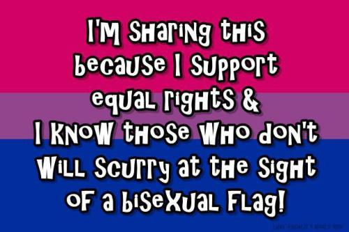 Bisexuals = people who can ♥ people of same gender as themselves + can ♥ people of different genders/gender presentations from themselves