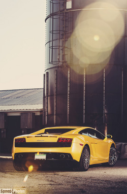automotivated:  DSC_3194 e3 (by NLP Speed-Photos)