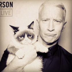 gay-men:  Anderson Cooper with Grumpy Cat!