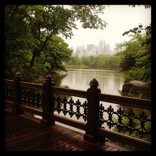 Found this nice view when I got lost in the ramble of Central Park this morning. #nyc #centralpark