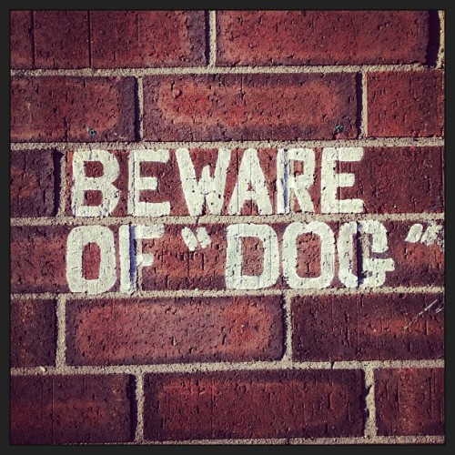 "Beware of ""Dog."" Is the ""dog"" imaginary?"