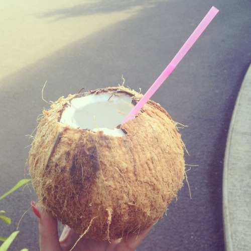 coconut milk:) yum