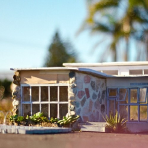 Miniature Midcentury Homes, so adorable, artist Anna Carey. #vintage #vintagehome #vintagedecor #vintageliving #vintageinterior #retro #retrohome #retrodecor #retroliving #retrointerior #kitsch #kitschdecor #kitschliving #kitschinterior