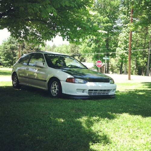 She's sittin' pretty in the shade on this beautiful day :) #eg6 #honda #lownslow #civic #shade #skunk2 #hondanation #hondalove #vtec #bwahhhhh