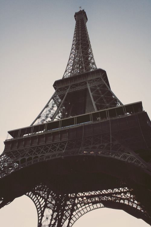paris-en-rose:  eiffel tower by pearled
