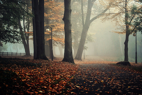 brutalgeneration:  By ewitsoe