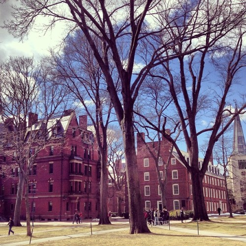 welcome to Harvard #boston #chicago #harvard