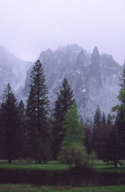 cervid:  Yosemite Valley_1989 (by cc-2412)