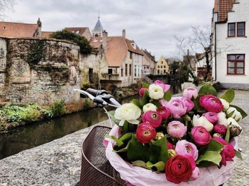 likefairytales flowers flowers bouquet bicycle bike