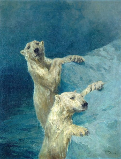 POLAR BEARSc. 1925, Oil on CanvasARTHUR WARDLEUnited Kingdom, 1864 - 1949
