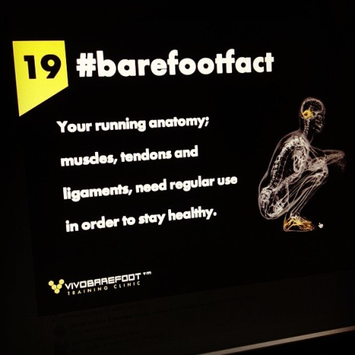 If you don't use it, you lose it.  #barefootfact 19  Your running anatomy; muscles, tendons and ligaments, need regular use in order to stay healthy. http://www.vivobarefoot.com/barefoot-facts