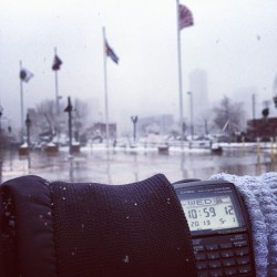 Spring has sprung #denver #may #watch #snow