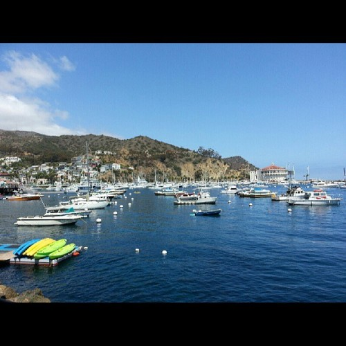 Catalina today's wedding playground. #kevinwarn #warnphotography