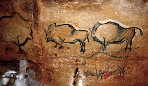 ancientart:  Bison in the prehistoric La Covaciella cave, Spain. Photo courtesy & taken by José Manuel Benito