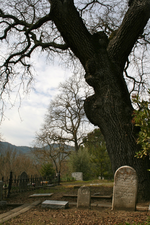 DANVILLE CEMETERYDanville, California©Laura Quick Charming little cemetery in my charming little hometown. My folks moved here 1000 years ago and I'd never stopped by, today I visited with @Daryl Darko