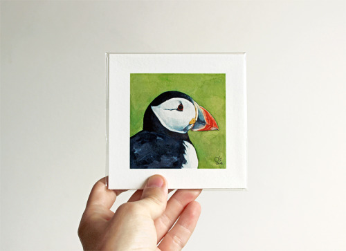 A new miniature Puffin portrait