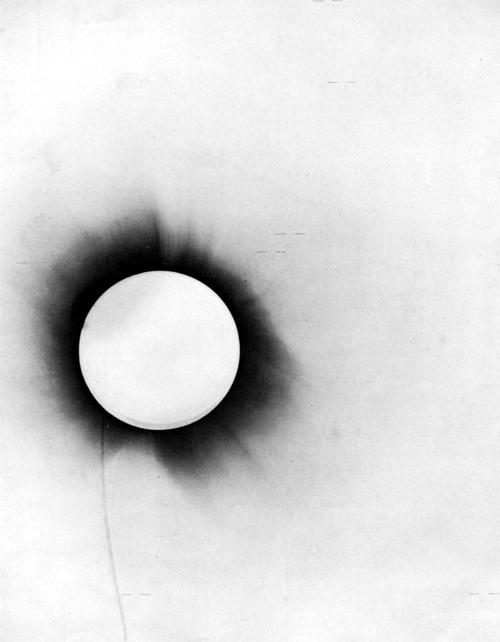 collective-history:  Arthur Eddington's negative of the 1919 solar eclipse used to test general relativity