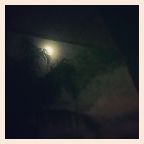 The almost full moon shining in through ma window. Night peeps. #goodnight #moon