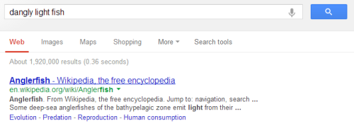 ejacutastic:  google's lookin out for me