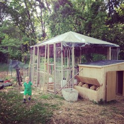 The chicken coop, gazebo, hutch, and outside run. And Bubba with an egg. So much room for our girls.