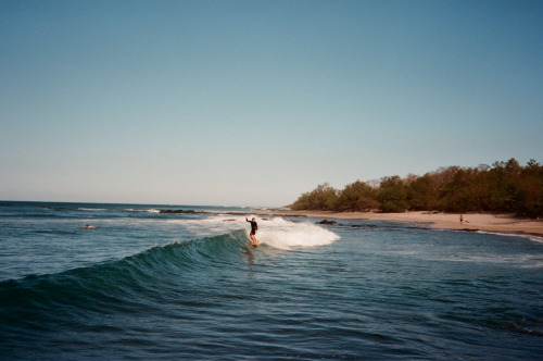 Tyler Warren styling a self-shaped log in Central America