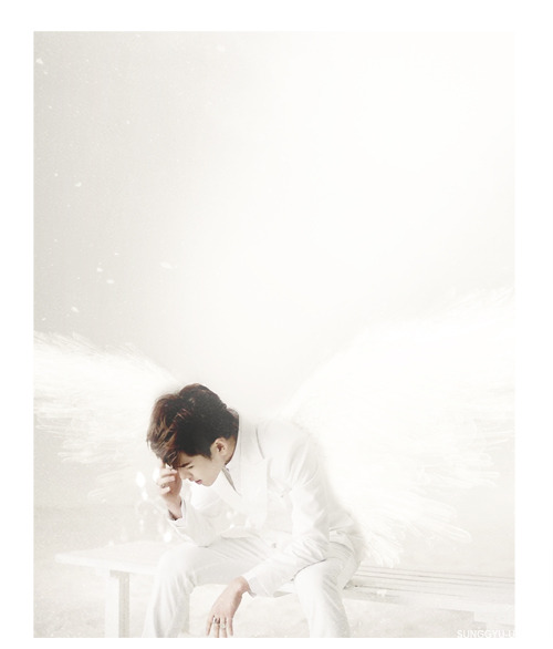 Hoya : : Angel  -  requested by haromsungs