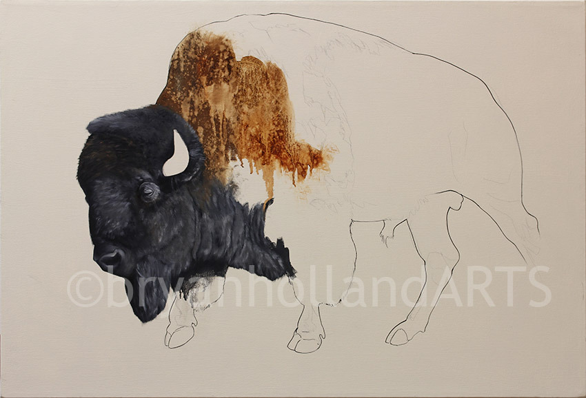 american bison (untitled work in progress)oil on canvas25.5 x 37.5 inches