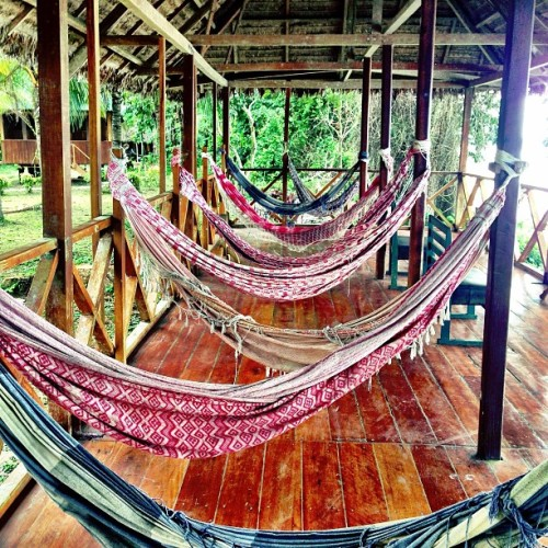 Definitely need more hammocks in my life. #blissedout